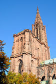 Cathedral in Strasbourg, France, built from pink stones — Stock Photo