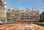 Tourists from the entire world admire african theme Flower Carpet on Grand Place — Stock Photo