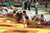 Unidentified volunteers start to prepare The Flower Carpet — Stock Photo