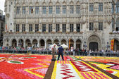 Unidentified volunteers do final touch on The Flower Carpet — Stockfoto