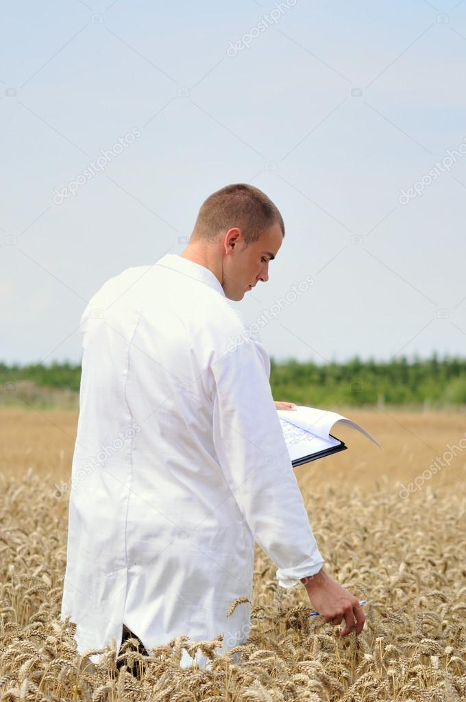 Scientist in the field doing collecting samples for experiments — Stock Photo #12284040