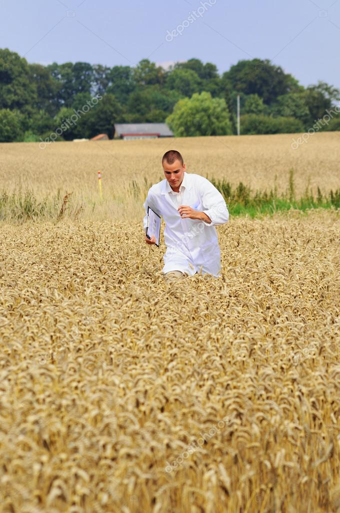 Busy young agronomist or a student running in the wheat field — Stock Photo #12284046
