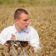 Young agronomist collecting samples in the wheat field - Stock Photo