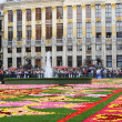 BRUSSELS, BELGIUM-AUGUST 14: The Flower Carpet 2010 with fountain attracted thousands of tourists from the entire world to Grand Place on August 14, 2010 in Brussels - Stock Photo