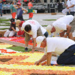 Stock Photo: BRUSSELS, BELGIUM-AUGUST 14: Unidentified volunteers build Africtheme Flower Carpet on August 14, 2012 in Brussels. This biennial event attracts thousands of tour