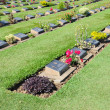 Cemetery of foreign POW of Death Railway in Thailand - Stock Photo