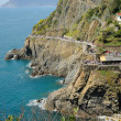 Panoramic view of Riomaggiore railway station area and promenade pathways in Cinque Terre, Italy with no faces and logos recognizable — Stock Photo