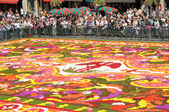 BRUSSELS - AUGUST 16: Flower carpet - 2008 in Brussels Grand-Place, Belgium. This year the carpet was made from begonia flowers — Stock Photo
