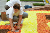 BRUSSELS, BELGIUM-AUGUST 14: Unknown volunteer prepares The Flower Carpet 2012 on August 14, 2012 in Brussels. This biennial event attracts thousands of tourists fro — Stock Photo