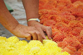BRUSSELS, BELGIUM-AUGUST 14: Unidentified volunteer prepares The Flower Carpet 2012 on August 14, 2012 in Brussels. This biennial event attracts thousands of tourist — Stock Photo