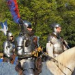16th Edition of Medieval Celebration in Abbey de Forest — Stock Photo