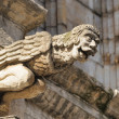 Laughing Gargoyle figure decorating medieval Town Hall in Brussels - Stock Photo