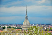Panorama of Turin with Mole Antonelliana — Stock Photo