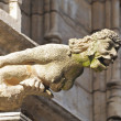 Mermaid Gargoyle from medieval Town Hall in Brussels, Belgium — Stock Photo #23920329