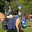 Medieval Celebration in Abbey de Forest — Stock Photo