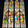 Window in Cologne Cathedral — Foto Stock