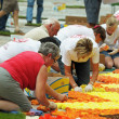 Volunteers of different ages arrange flowers for The Flower Carpet 2012 — Stock Photo