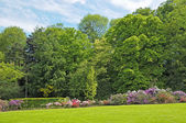 Parc in Brussels — Stockfoto