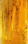 Cold beer in glass with condensation drops — Stock Photo