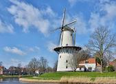 传统的荷兰风车是荷兰的建筑符号之一. — 图库照片