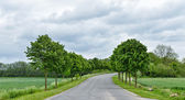 Road landscape in Walloon, province Liege in Belgium — Stock Photo