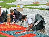 Volunteers continue their work on the Flower Carpet on Grand Place during rain — Stock Photo