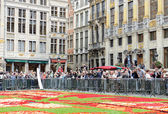 Tourists admire the Flower Carpet in Brussels — Stock Photo
