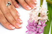 Professional manicure with flowers — Stock Photo