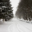 Snowy day on street in country side — Stock Photo