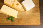 Various type of cheese on Wooden Board — Stock Photo