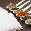 Kitchen book with various of Spices — Stock Photo #26900829