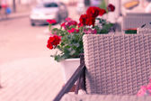 Wicker chair in a street cafe — Stock Photo