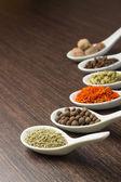 Spices in Ceramic Spoon — Stock Photo