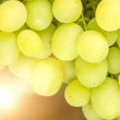 Stock Photo: White Table Grape close-up photo