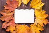 Blank notebook sheet with autumn leaves on old wood background — Stock Photo