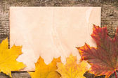 Old paper sheet with fallen leaves on wood background — Stock Photo