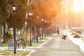 Sunny Winter City Park landscape background — Stock Photo