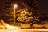 Winter city landscape. Evening Park with Lantern — Stock Photo