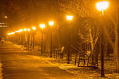 Pathway in winter park with row of lanterns. Evening city — Stock Photo