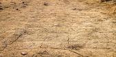 Drought. Ground in sand desert. Natural disaster — Stock Photo