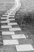 Curving Pathway . Black and White image of walking path — Stock Photo