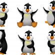 Young penguin set character — Stock Vector