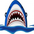 Angry shark — Stock Vector