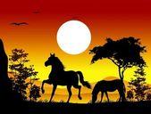 Krása koní siluety s pozadím krajina — Stock vektor