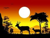 Beauty deer silhouettes with landscape background — Stok Vektör