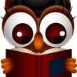 Cute owl reading book - Stock Vector