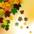 Royalty-Free Stock Vector Image: Autumn background with leaves