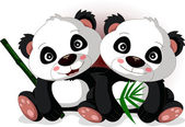 Cute cartoon panda's brother — Stock Vector