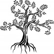 Black tree silhouette isolated on white background — Stock Vector #24446273