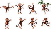 Cute comical monkey series — Stock Vector